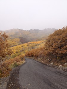 Fall Snow in Wasatch State Park Guardsman Pass